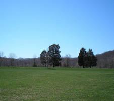 March 22: Alone by steward