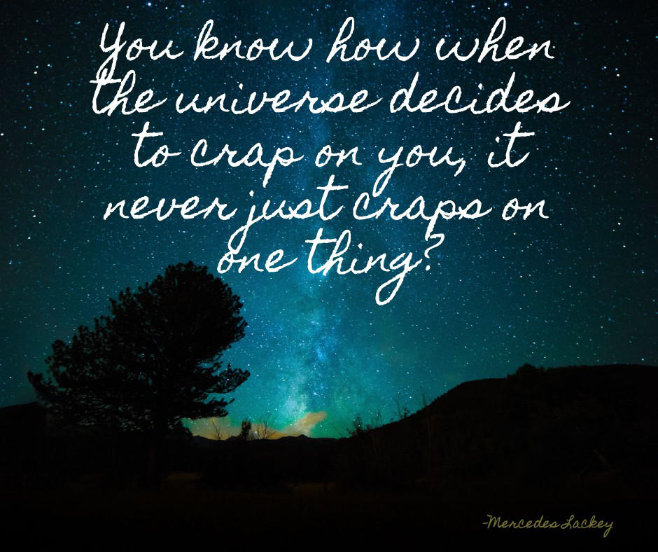 Universe crap by steward