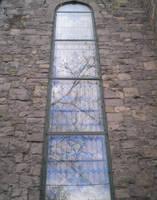 Marsha Brown Window by steward