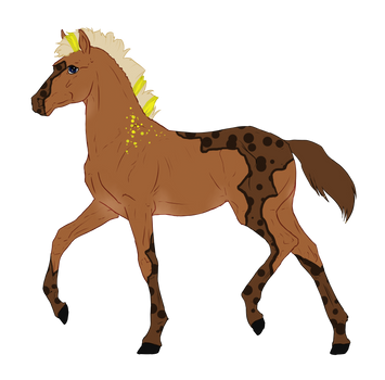 N4216 Padro Foal Design for Kandy918 by Mimi-McG