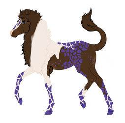 N4477 Padro Foal Design for Nabashta by Mimi-McG
