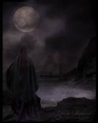 The return by dark--shepherd
