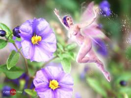 Just a Fairy by HoiHoiSan