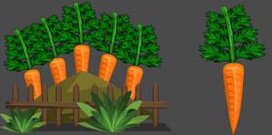 Carrot Garden by Occavatra