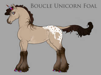 Boucle Foal B048 by JumpingRanch
