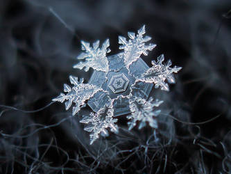 Snowflake by ChaoticMind75