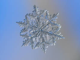 Snowflake n.3 13-Feb-2017 by ChaoticMind75