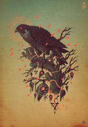Falcon by motsart
