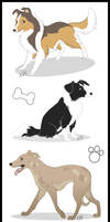 dogs by adiAdii