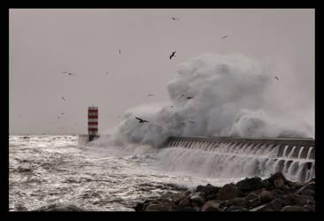 Sea Rage by JoseMelim