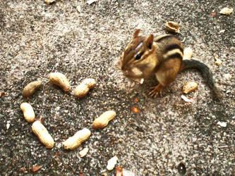 I love nuts. by xRazorbladeKiss