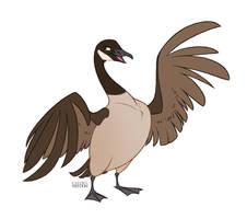 Canadian Goose by faithandfreedom