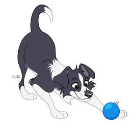 Poochember DAY 1 - Border Collie by faithandfreedom