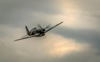 Morane-Saulnier M.S.406 by vipmig