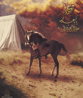 Ya Aba Abdullah by mustafa20