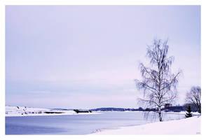 Volga by Dobaju