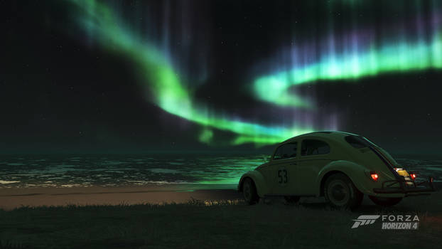 Nature's Christmas Lights by DrifterXRacer