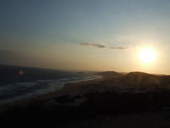 caretta carettas' beach by 0-carnivaeen-0