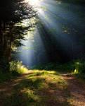 Paradise Rays by HerrHaller