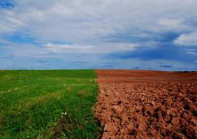 Field wars by ljenda
