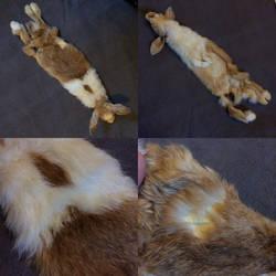 Dutch Craft Rabbit Pelt - For Sale! by Hawock