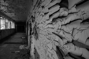 Urban Decay by dafour
