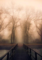 Bridge to Mystery by jva3