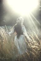 Walk on the Beauty's Way by Lorelyne