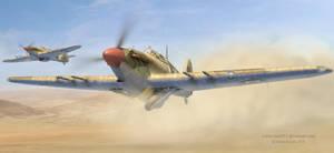Desert Hawks by rOEN911