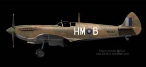 Supermarine Spitfire Mk VIII by rOEN911