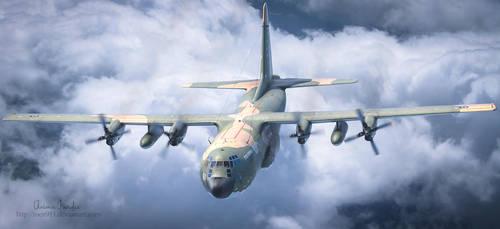 HAF C-130 Hercules by rOEN911