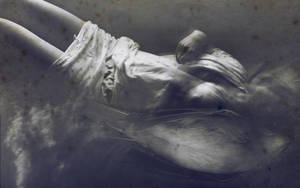 Funeral Bird by CanusLilium