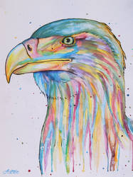 Splashed eagle by a-Astree