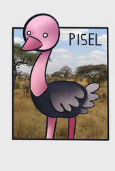 Pisel the ostrich by MateriaFecale