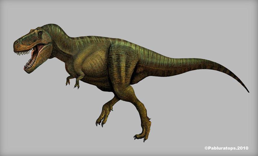 Tyrannosaurus rex by PREHISTOPIA