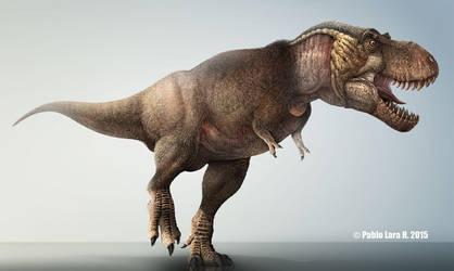 Tyrannosaurus rex-Alternate version. by PREHISTOPIA