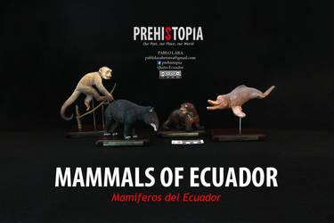 MAMMALS OF ECUADOR - MAMIFEROS DEL ECUADOR by PREHISTOPIA