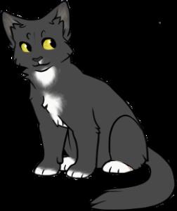 Acaciaa1's Profile Picture
