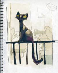 cat by Haidak