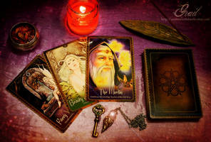 Wild Wisdom of the Faery Oracle by GrailSidhe