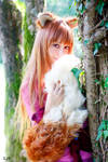 Horo  the wise by Okami-kiss