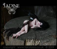 Jadine - Dark Forest Faery - 1 by fairytasia