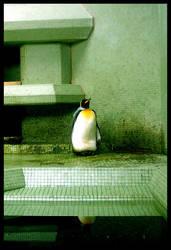 prisoner by ssilence