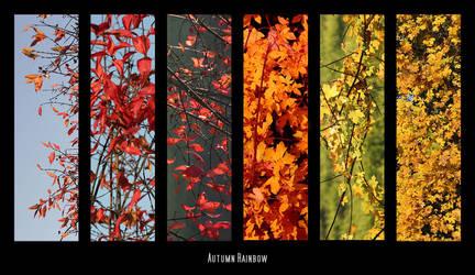 autumn rainbow by ssilence