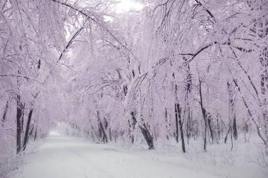fairys winter by ssilence