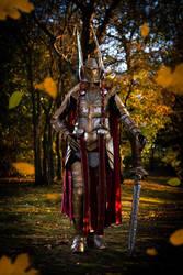 Valkyrie armor by Atelier-Cynamon