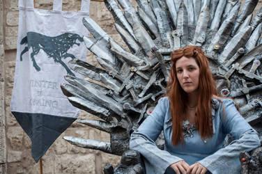 The heir of Winterfell by CalamityJade