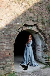 Captive Sansa by CalamityJade