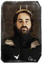 King Robb by CalamityJade