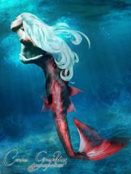 Mermaid Echo by CoraGraphics